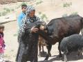 10-a once needy woman becomes the village khala.JPG
